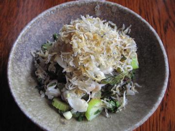 Yasuko San S Home Cooking Celery And Shirasu Salad